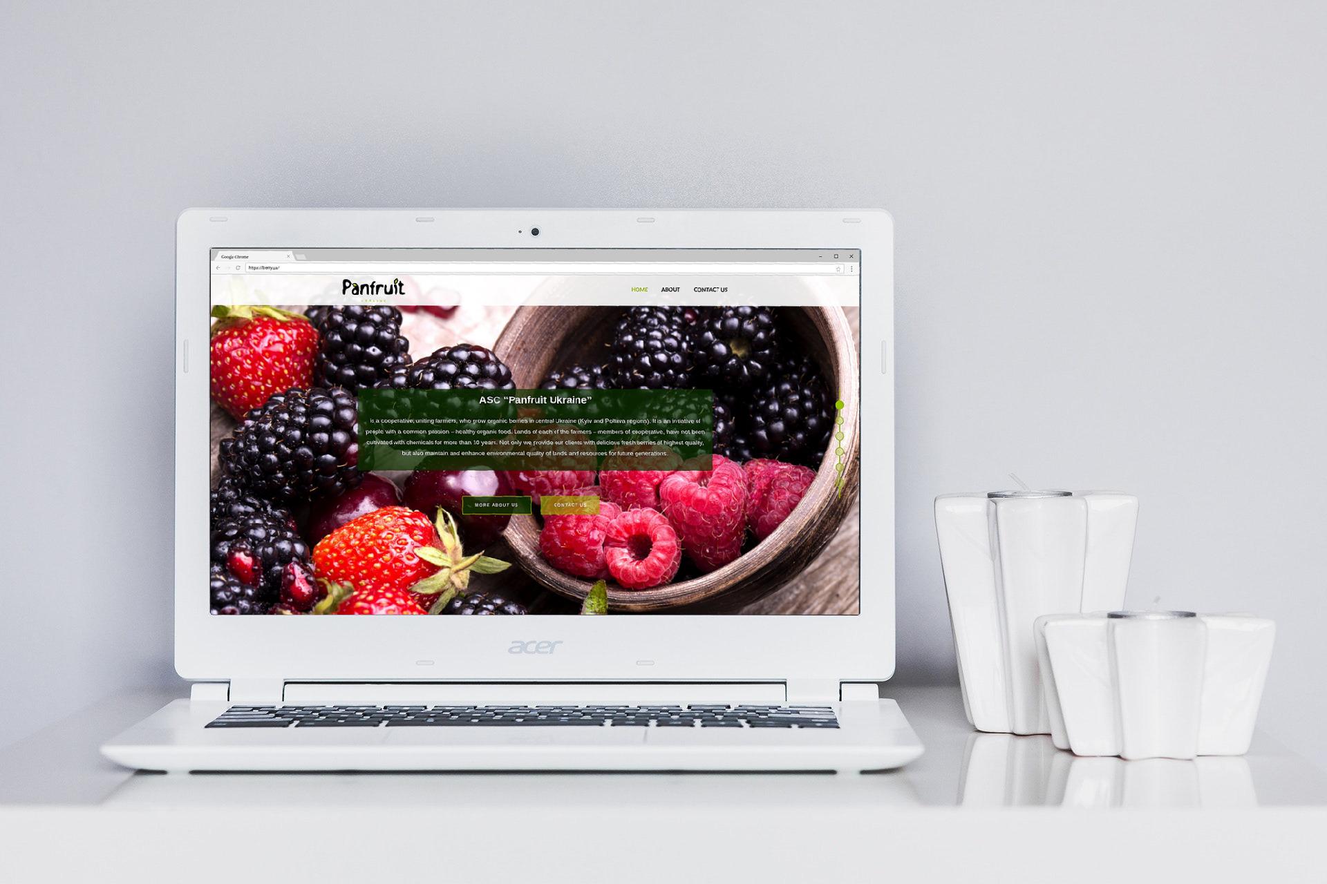 Landing-page для экспортёра органических ягод